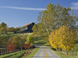 Rural Road Through Bluegrass in Autumn Near Lexington  Kentucky  USA
