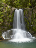 Waiau Waterfall Near 309 Road  Coromandel Peninsula  North Island  New Zealand