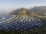 Boats Anchored in Catalina Harbor  Catalina Island  California  USA
