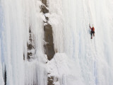 Ice Climber on Weeping Wall Above the Icefields Parkway  Banff National Park  Alberta  Canada