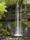 Russell Falls  Mount Field National Park  Tasmania  Australia