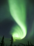Aurora Borealis  Fairbanks  Alaska  USA
