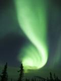 Aurora Borealis  Fairbanks  Alaska  USA