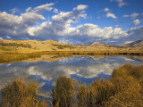 Swan Lake Reflects Clouds and Gallatin Mountain Range  Yellowstone National Park  Wyoming  USA