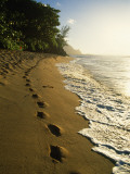 Footprints in Sand  Hanalei  Hawaii  USA
