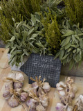 Rosemary and Garlic  Moustiers-Sainte-Marie  Provence  France
