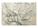 Branches d'amandier en fleurs, Saint-Rémy, vers1890 - tonalité brun beige Giclée premium par Vincent Van Gogh