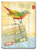 Natural Wonders-Bird