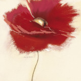 Red Poppy Power III