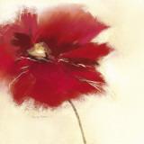 Red Poppy Power II