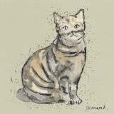 Kitty Tales I