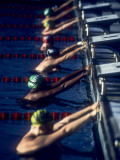 Male Swimmers at the Start of a Race