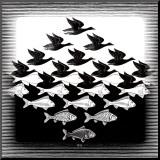 Ciel et eau Reproduction montée par M. C. Escher
