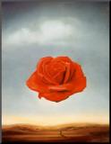Rose méditative, 1958 Reproduction montée par Salvador Dalí