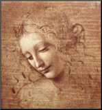Female Head (La Scapigliata)  c1508