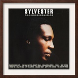 Sylvester  The Original Hits