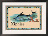 Xiphias