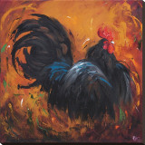 Rooster  no 501
