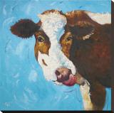 Cow  no 303