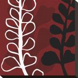 Maidenhair on Red Ground