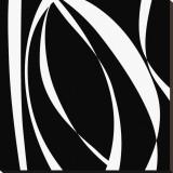 Fistral Nero Blanco I