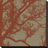 Cinnamon Tree IV