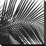 Palms  no 10 (detail)