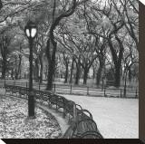 Walk Through the Park