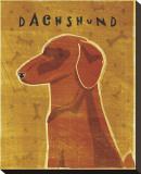 Dachshund (red)