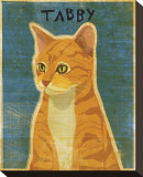 Tabby (orange)