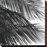 Palms  no 4 (detail)