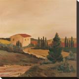 Sunny Tuscan Fields
