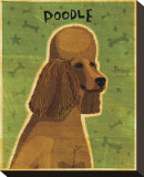 Poodle (brown)