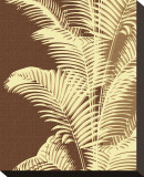 Ivory Palm