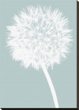 Dandelion (blue)
