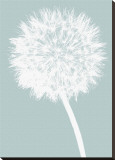 Dandelion (blue)
