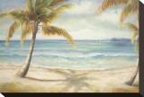 Shoreline Palms II