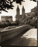 Central Park Bridges I