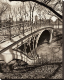 Central Park Bridges III