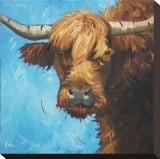 Cow  no 301