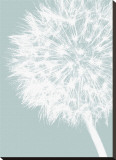 Dandelion Crop (blue)