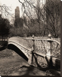Central Park Bridges II