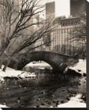 Central Park Bridges IV
