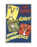 Goofy Gymnastics