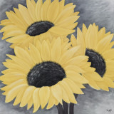 Sunflower Serenade II