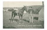 Gimlet the War Horse of the Potomac