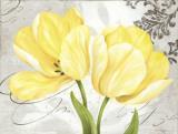 Colori Yellow II