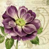 Study in Purple I