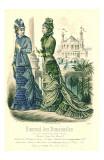 Demoiselles  4153