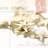 Postal Shells II